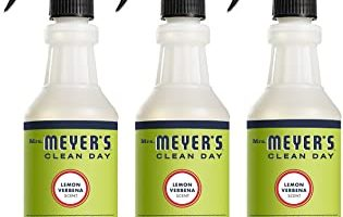 Meyer's Clean Day